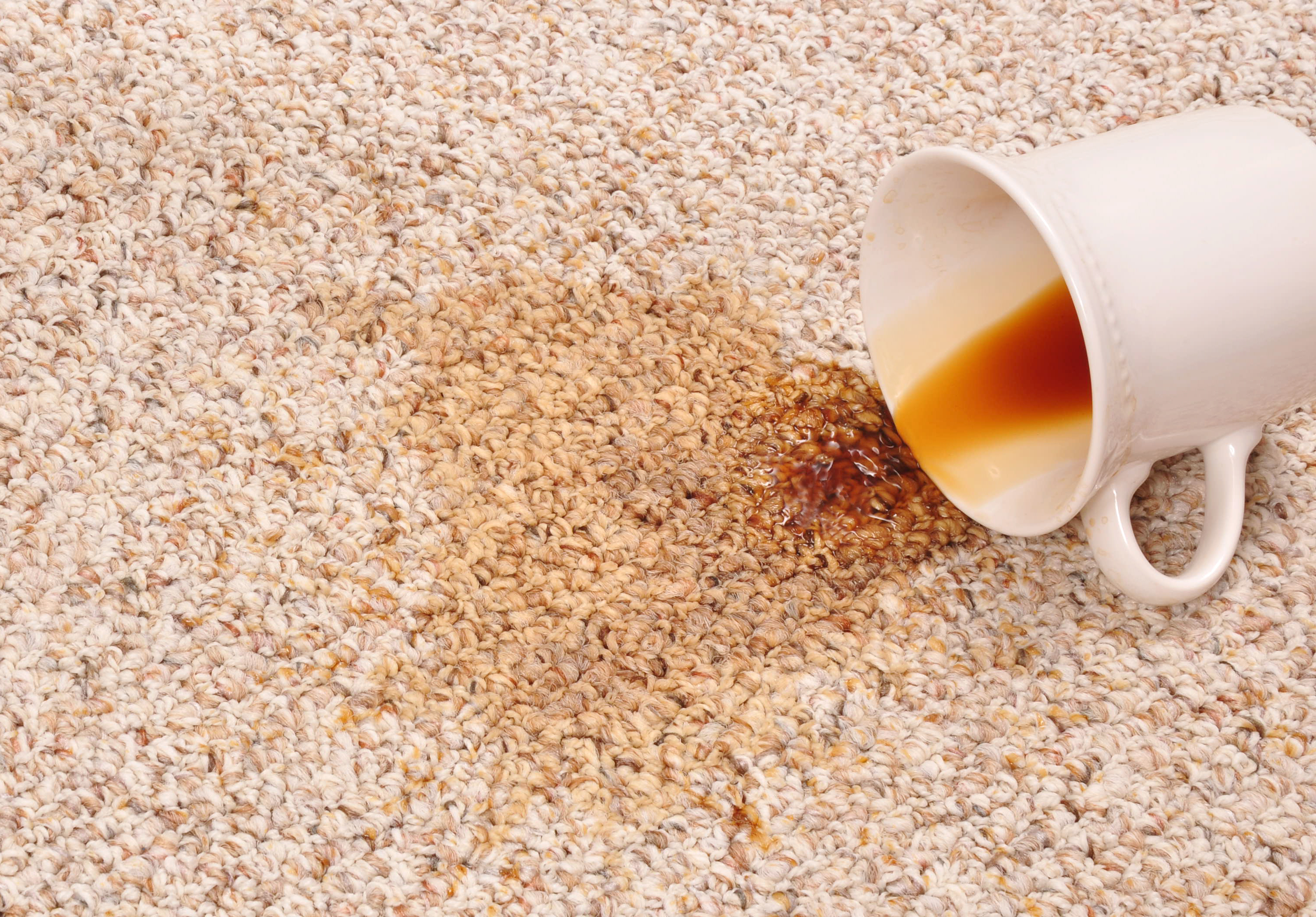 Coffee Stain On Carpet >> Coffee Stain Coastal Carpet Cleaning